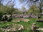Naturgarten-Marianne-Haider