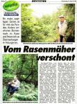 Kronenzeitung-Steinbruch