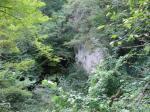 Steinbruch-Grubenwand-Altmoos