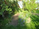 Naturgarten-der-Weg-Christian-Skiba