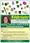 Wildkräuter - Kurs
