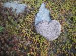 Turmbau-mit-Herz