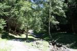Naturgarten-Ort-der-Erholung