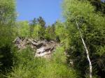 Wald-von-Nadja-Pressinger