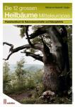 Buch-Heilbäume-Achillea
