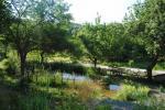Amtmann-Naturgarten