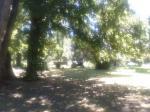 Tonhof-Garten