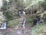Wasserweg-Liebenfels-Natur-pur